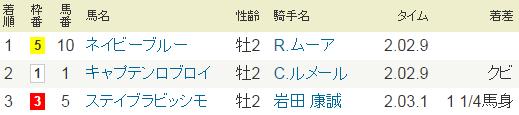 2015年・東京3R.PNG
